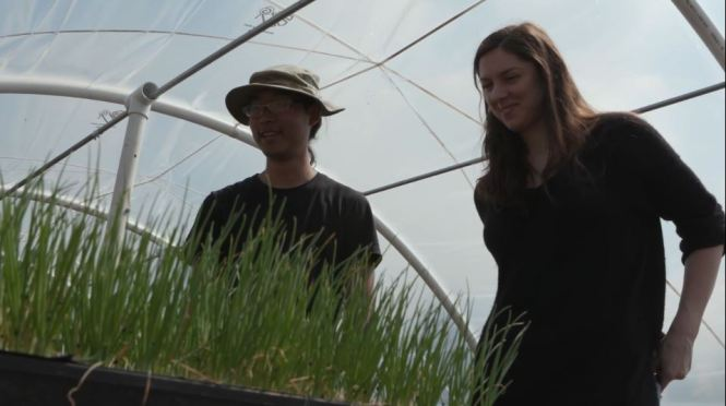 Roger Woo and Darcy Smith, Land Matcher with Young Agrarians